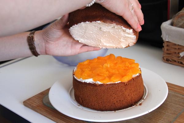 Vampir Torte Rezept